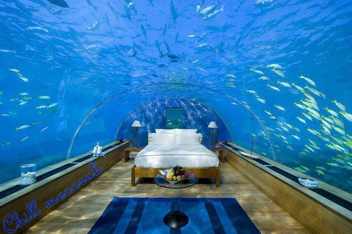 chambre dans un aquarium. Black Bedroom Furniture Sets. Home Design Ideas